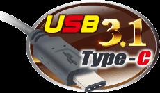USB3.1 Gen2 Type-C logo