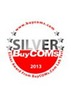 "Biostar Hi-Fi A85X received ""Silver Award"" from Buycoms.com, Thailand:"